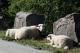 Cesta z Hardangerviddy